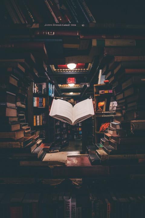 Digitale boekenbabbel